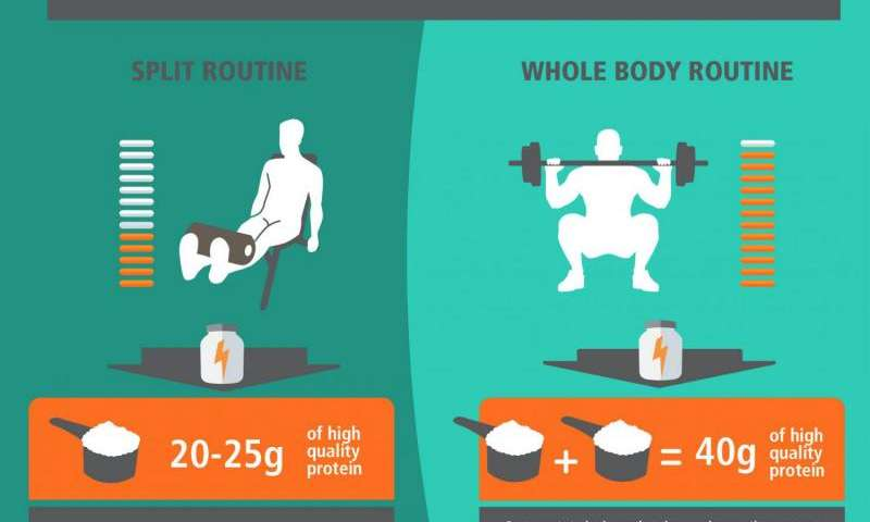 How much protein should we eat after exercise? Credit: University of Stirling